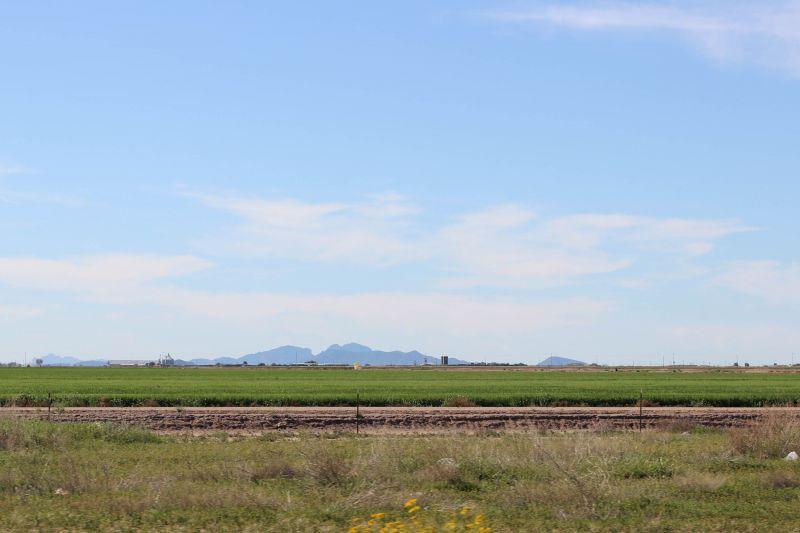 Зеленые равнины. По дороге на Феникс