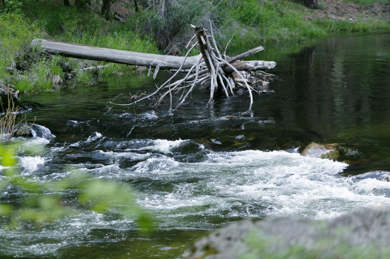Йосемити парк. Долина Йосемити. Река Мерсед