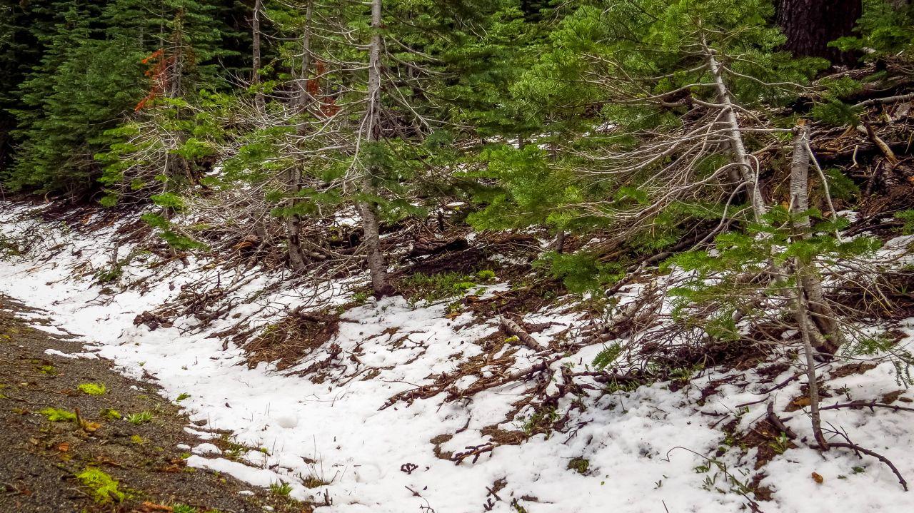 Йосемити парк. Снег в конце мая