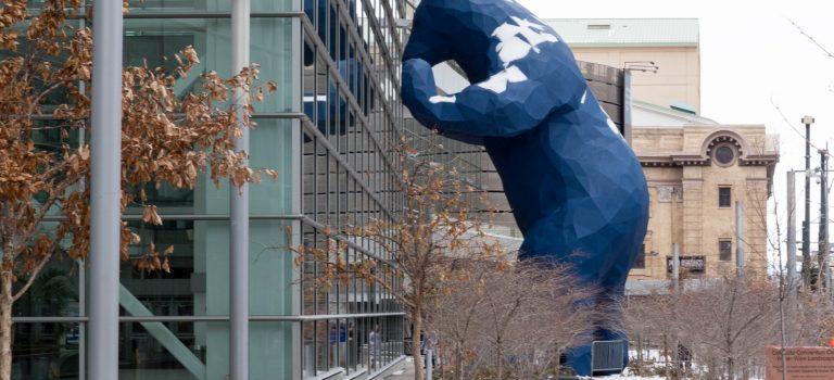 """Денвер. """"Под колпаком"""" у синего медведя"""