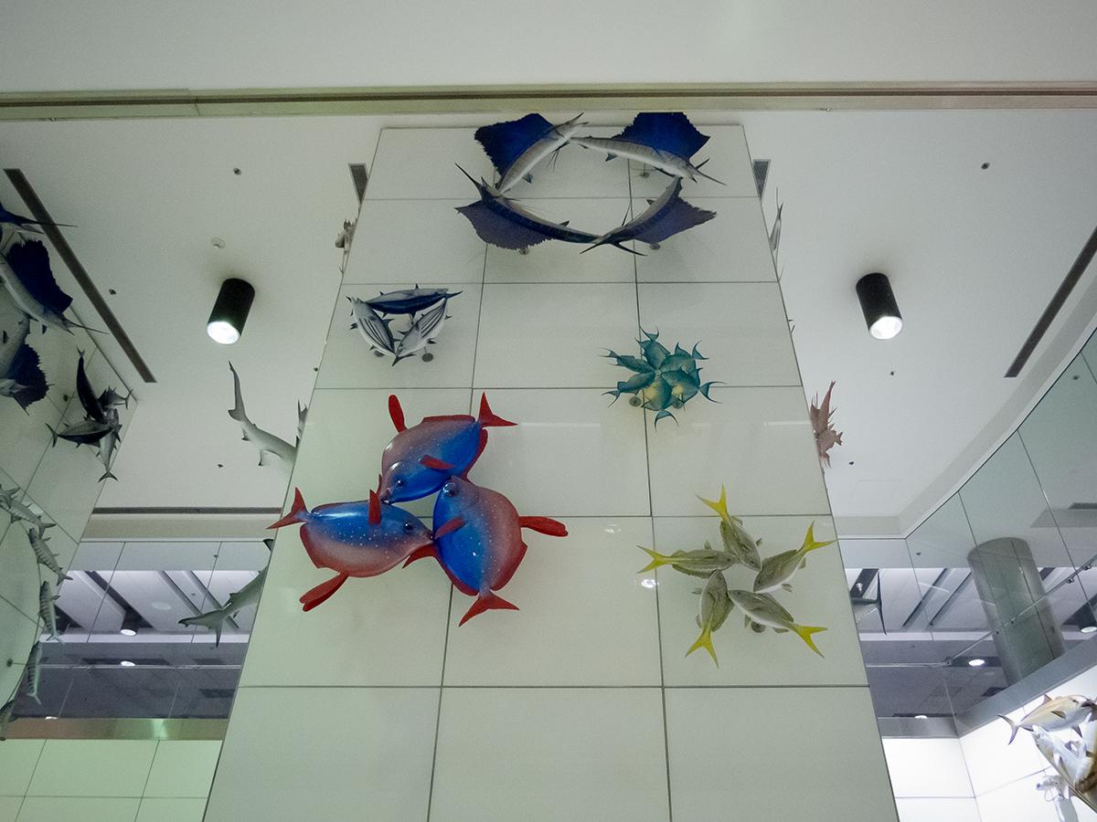 Рыбки в аэропорту Майами