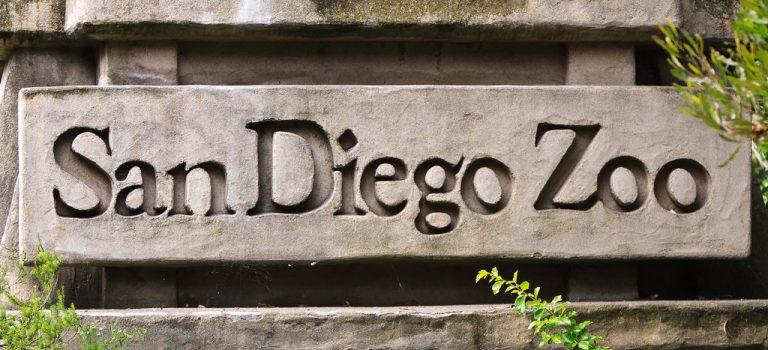 Герой самого первого ролика YouTube – зоопарк Сан-Диего