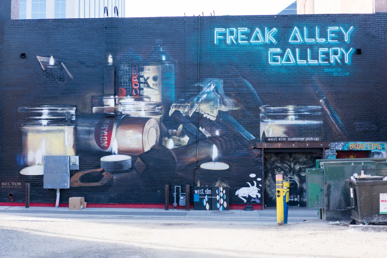 Freak Alley Gallery в Бойсе